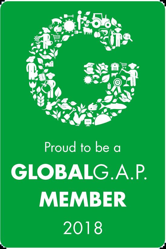 Member_Seal_green_RGB